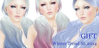 winter trend sl 2014_gift
