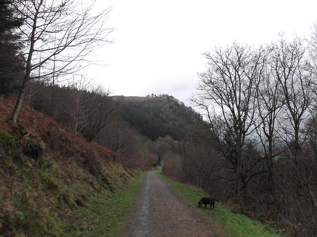 breidden hill 046
