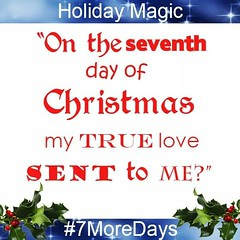 "From the hit song ""12 Days of Christmas"", what was given on the seventh day? #HappyHolidays #HolidayMagic #7DaysAway #TrueLove  #Clue #Animal #Bird"