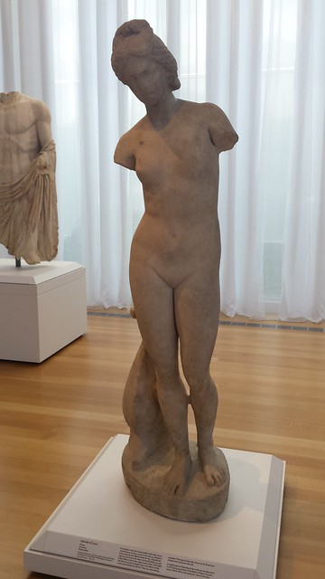 Venus?