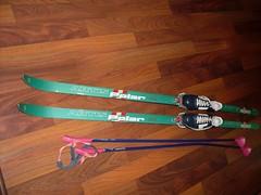 Běžky Artis Polar, boty Botas, hůlky - titulní fotka