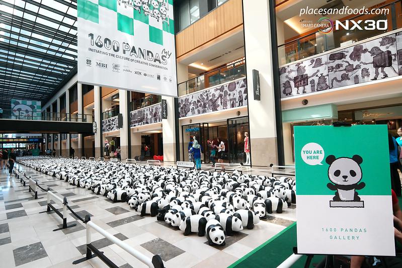 publika 1600 pandas overview wide angle