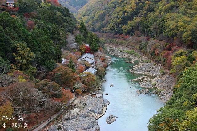 嵐山公園40