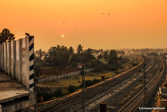 Morning Highness - Ukkadam - Coimbatore