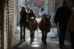 Brighouse Victorian Christmas Festival - Donkey Rides
