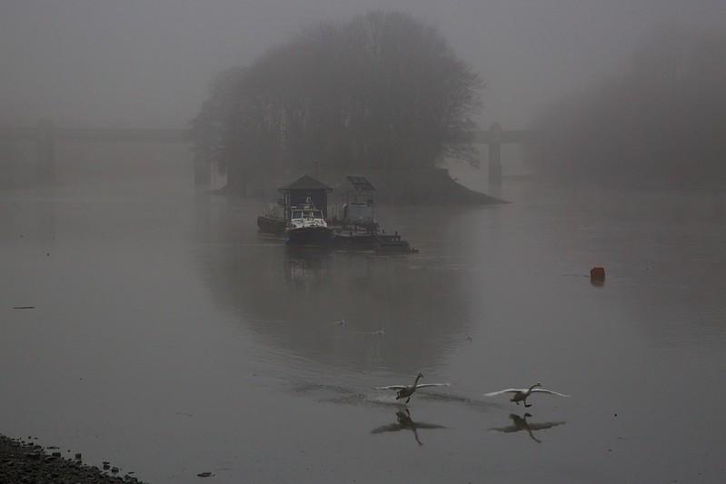 wylie_thames fog 5