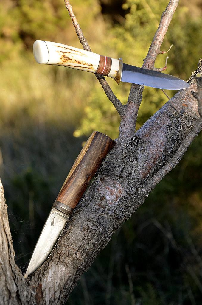 Des traces de couteaux dans les bois 15645218353_a0d92380d4_b
