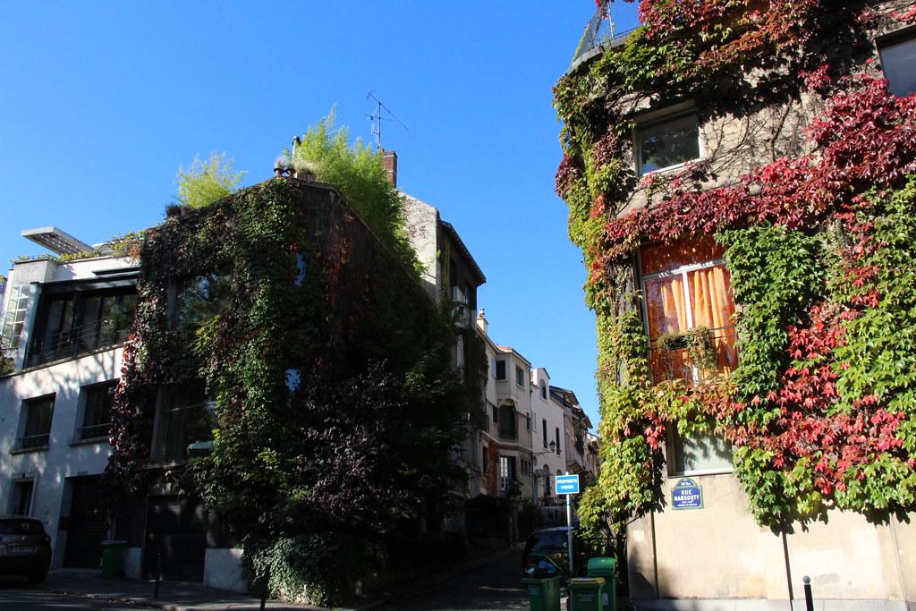 ivy in paris