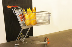 shelf(0.0), furniture(0.0), table(0.0), design(0.0), iron(0.0), chair(0.0), interior design(1.0), shopping cart(1.0), cart(1.0),