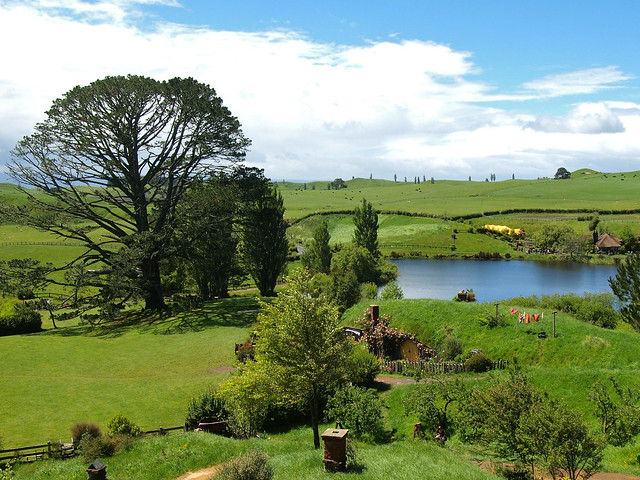 The Party Tree in Hobbiton