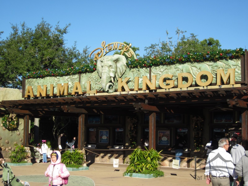 Walt Disney World - Disney's Animal Kingdom
