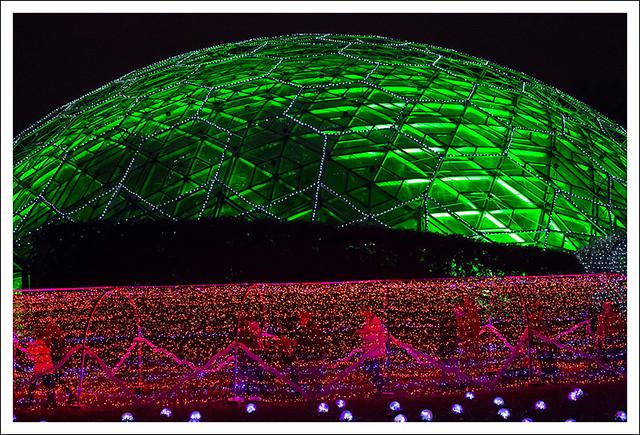 2014-12-23 Garden Glow 8