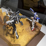 GBWC2014_World_representative_exhibitions-247