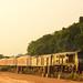 The Golden Express! by Pratik14004
