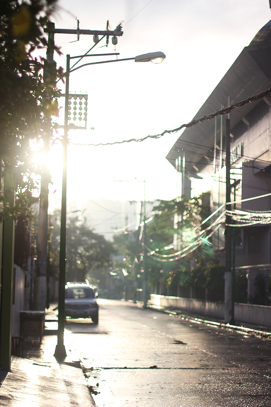 Shadow-and-Light_01