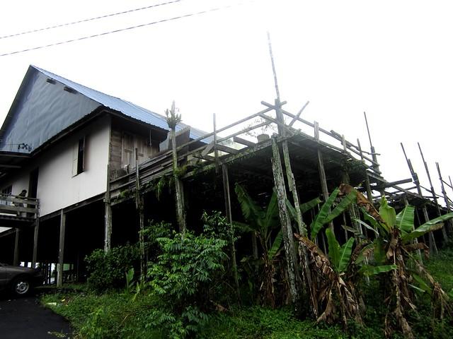 Aup longhouse