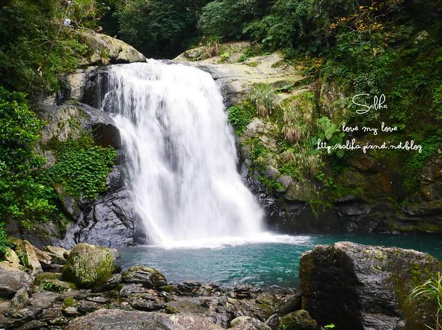 烏來景點內洞森林遊樂區 (19)