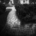 Sudden Rain by Gene Wilburn