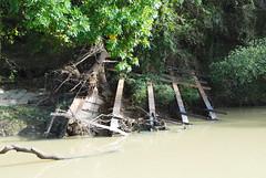 Collapsed Spring Creek Bridge on Unknown Road 1411021413