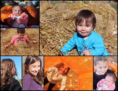 PumpkinFun 2014