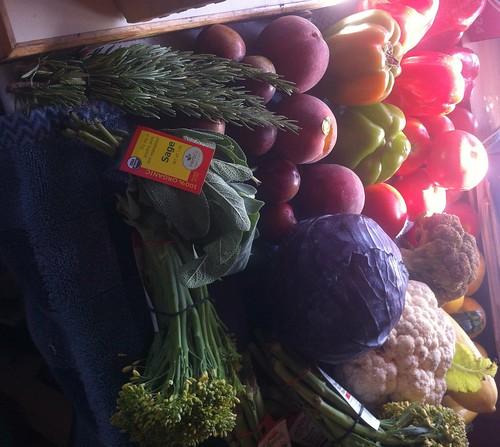 Fresh Organic Herbs and Veggies!