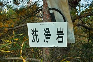 洗浄岩(千畳岩) #1