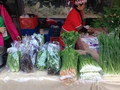 烏來原住民種植多樣化的蔬菜,守護作物、種源多樣性。