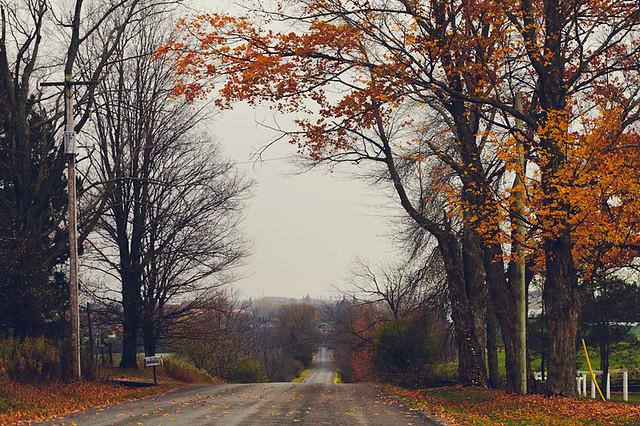 autumn drives