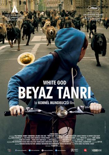 Beyaz Tanrı - Feher Isten – White God (2015)