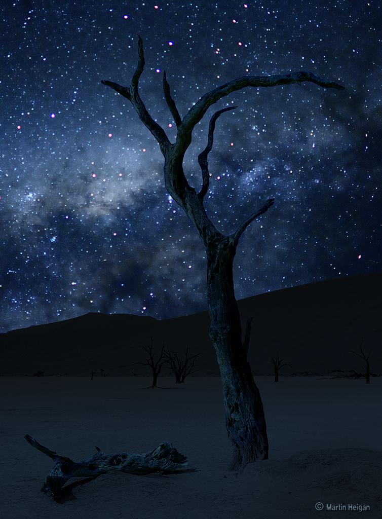 Namib Desert Milky Way