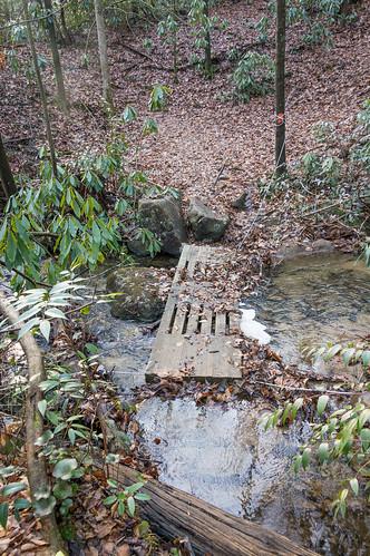 Coldspring Branch stream crossing #1