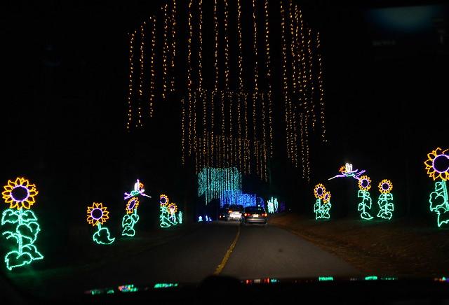 Lights Flickr Photo Sharing