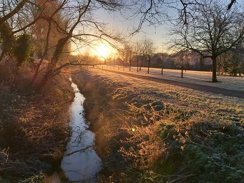 winter tree grass sunrise stream frost dundonaldbelfast