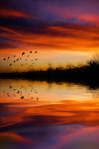 pink red england orange clouds sunrise colours unitedkingdom 8365 smeetonwesterby
