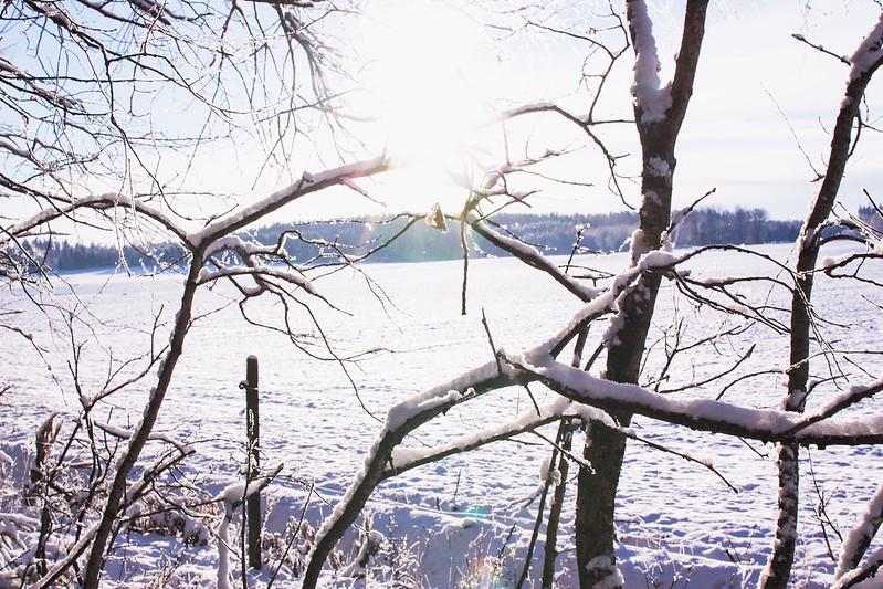 vinterslanten18