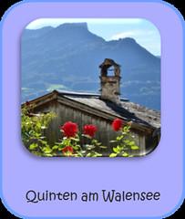 Quinten