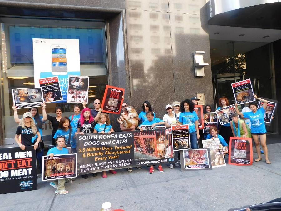 New York-International Day of Action for South Korean Dogs