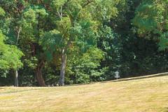 Dick Thurnau Memorial Park
