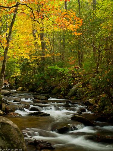 autumn fall tennessee fallcolors smokymountains cadescove greatsmokymountainsnationalpark