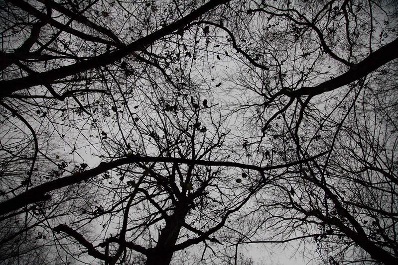 18/12/14 Sky High