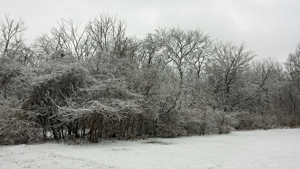 Yes, we finally got some snow today