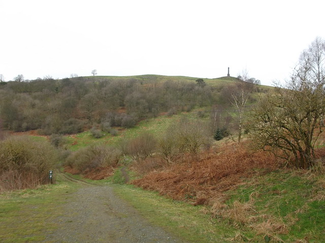 breidden hill 040