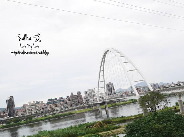 板橋景點新月橋 (3)