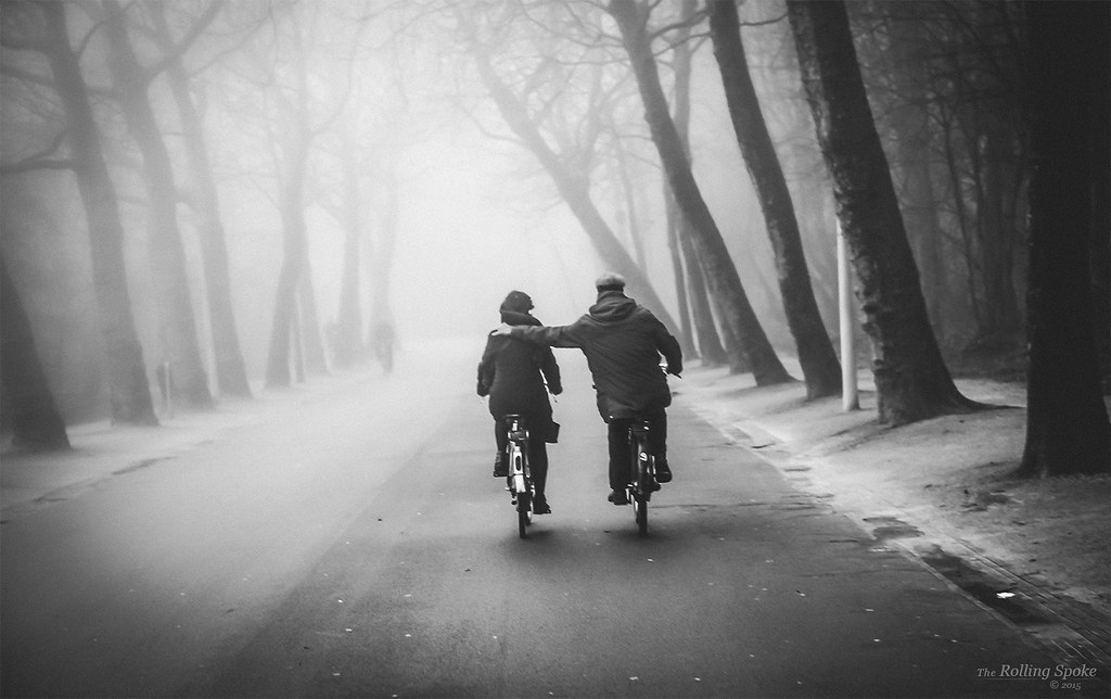 Two people riding in Vondelpark in the fog.