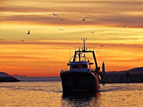 sunset españa atardecer spain andalucia costadelsol puestadesol estepona