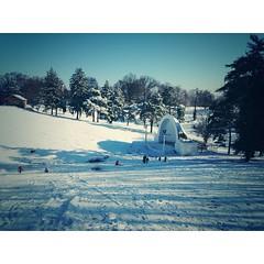 Sledding Last Winter - #devou #devoupark #theCOV #covingtonky #ky #noky #northernky #nky #winter #kentuckypics #kentucky