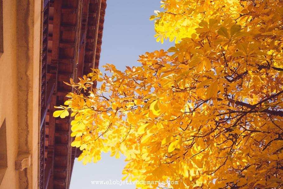Cielo pintado de amarillo