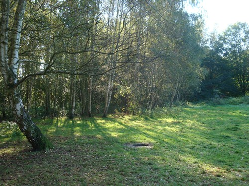 berkenbos maart 2014