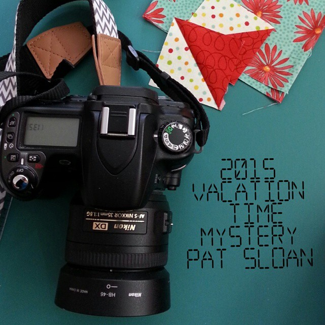 What might I be finalizing?  Are you joining me in 2015 #quilt #quilting #showmethemoda #PatSloan