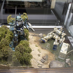 GBWC2014_World_representative_exhibitions-221